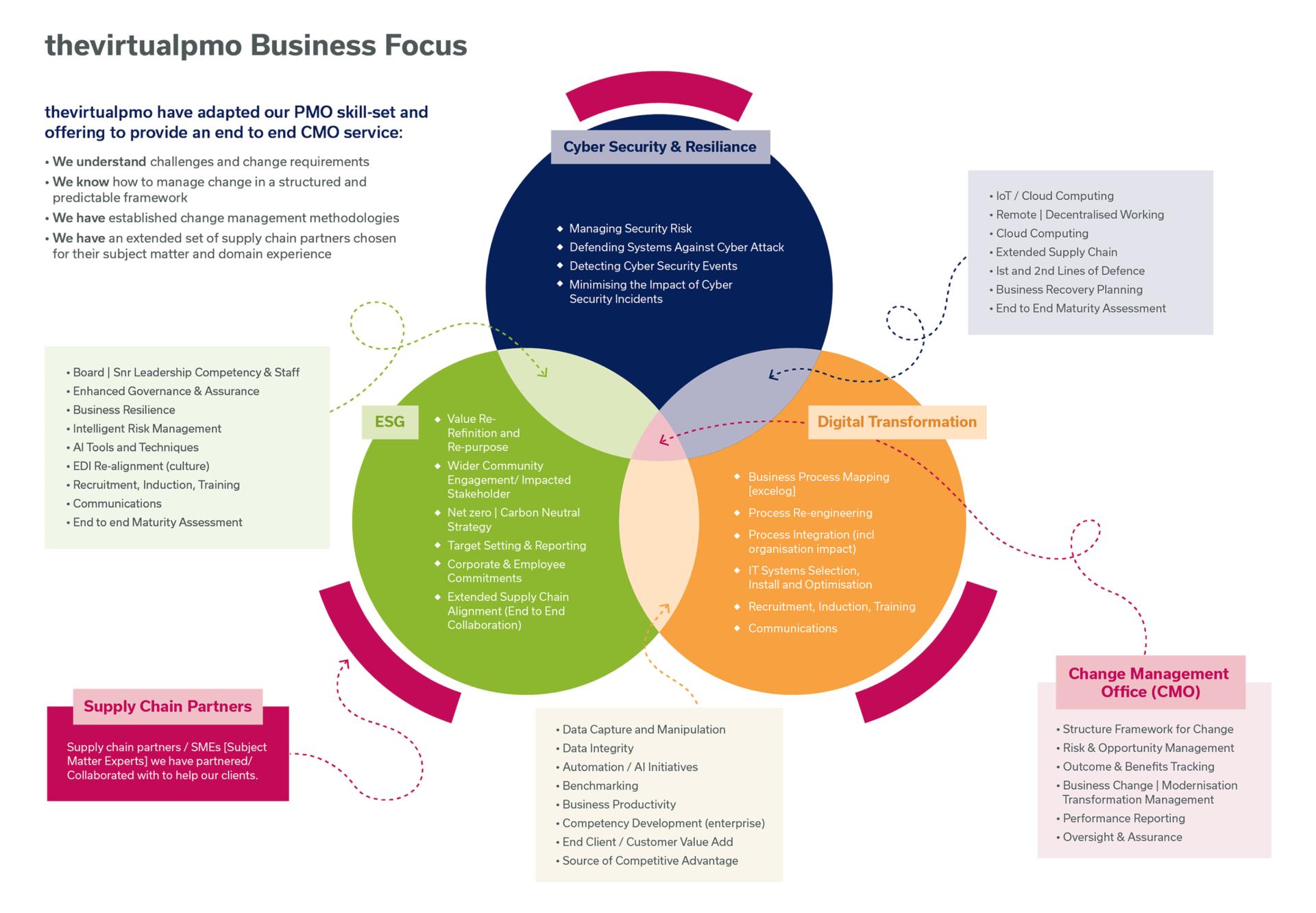 thevirtualpmo Business Focus